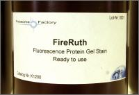 FireRuth fluorescent staing solution